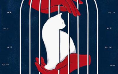 41 Festival de Cine de La Habana: Premio Coral de cartel para Diana Carmenate